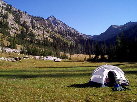 A pup tent is in the foreground, set up in a lovely meadow.  In the background is a series of mountains and cliffs, laced with trees.